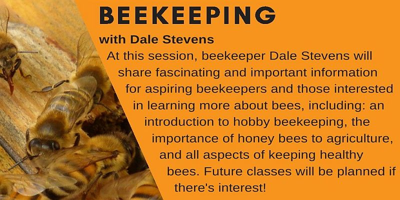 Beekkeeping with Dale Stevens 2018